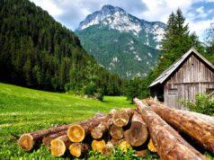 Köp bostad i Alperna - Översätt svenska till tyska